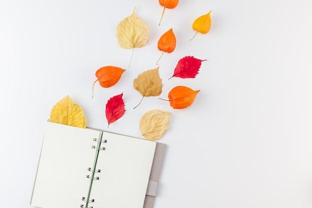 Otwórz notatnik z suszonymi kwiatami pomarańczy i jesiennymi liśćmi