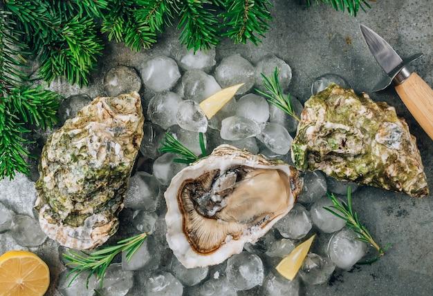 Otwórz surowe ostrygi z cytryną i rozmarynem. świeże owoce morza na metalowym tle