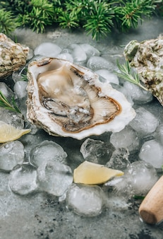 Otwórz surowe ostrygi z cytryną i rozmarynem. świeże owoce morza na tle metalu. selektywne skupienie. koncepcja świąteczna