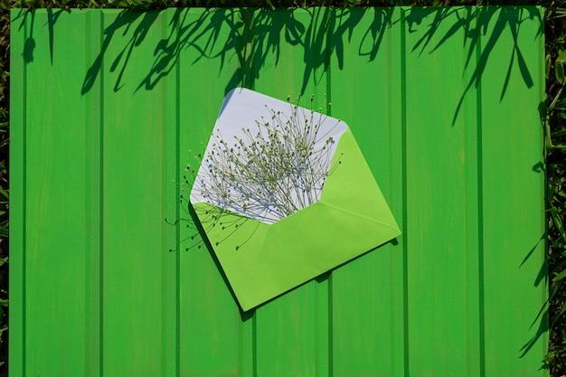 Otwórz zieloną kopertę z polnymi kwiatami na zielonym drewnianym tle witam od lata