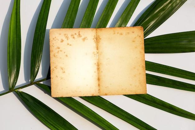 Otworzył starą książkę na liściach tropikalnych palm. widok z góry