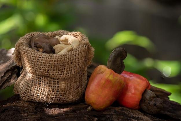 Owoce I Nasiona Orzechów Nerkowca. Premium Zdjęcia
