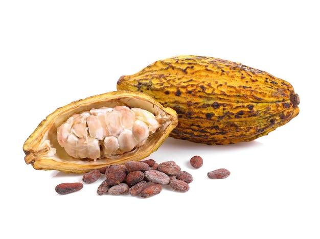 Owoce kakao na białym tle