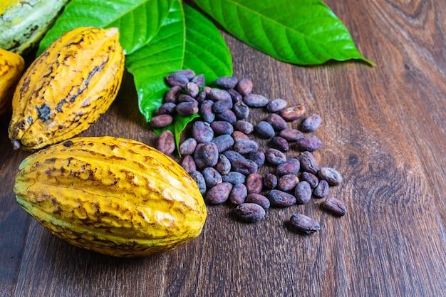 Owoce kakaowe i ziarna kakaowe