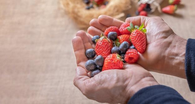 Owoce lasu w rękach
