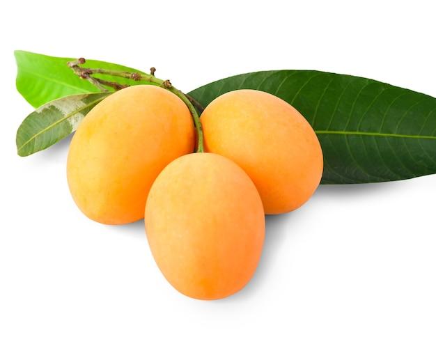 Owoce maprang na białym tle