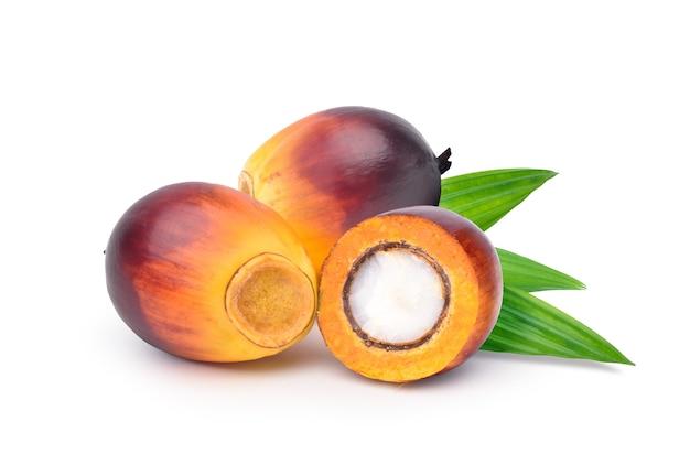 Owoce palmy olejowej przeciąć na pół na białym tle