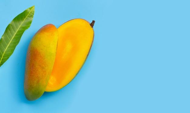 Owoce tropikalne na niebieskiej powierzchni