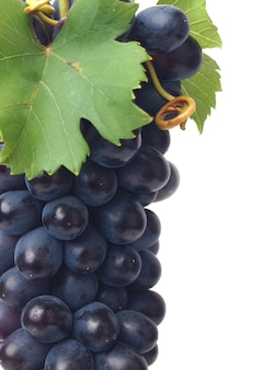 Owoce winogron