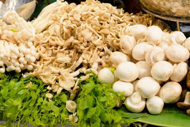 Oyster mushroom and fresh champignon mushrooms.