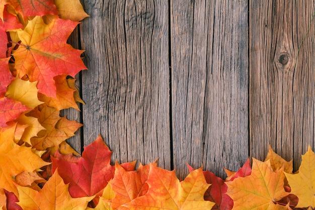 Ozdobne tło ramki z liści klonu jesienią