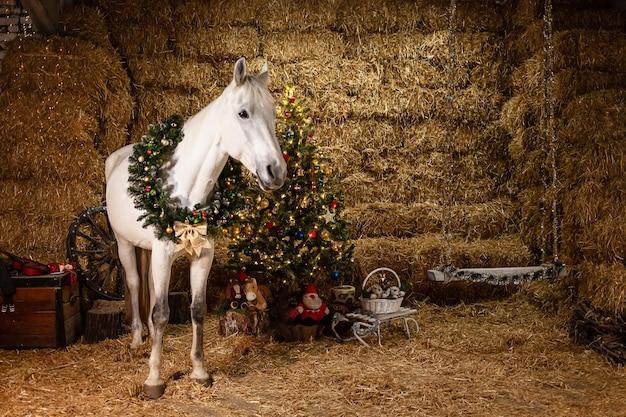 Ozdoby świąteczne na stajniach. piękny koń z wieńcem na szyi. choinka z balonami, strefa zdjęć na nowy rok.