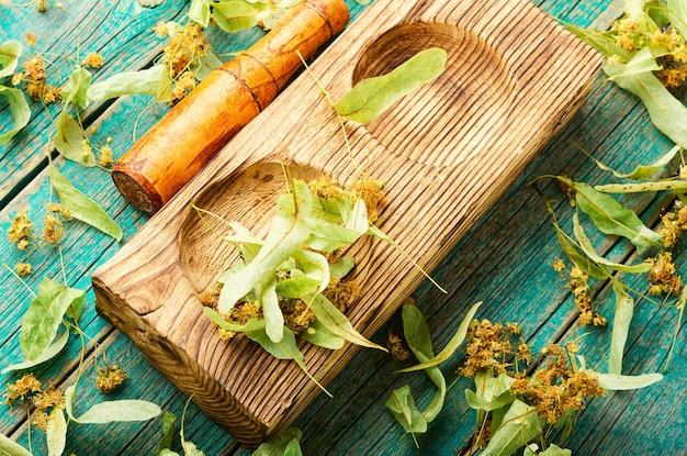 Pachnąca lipa w stylowym drewnianym moździerzu z tłuczkiem. rośliny lecznicze. medycyna ziołowa.