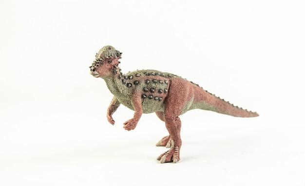 Pachycefalozaur, dinozaur.