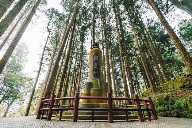 Pagoda ducha drzewa na terenie rekreacyjnym narodowego lasu alishan.
