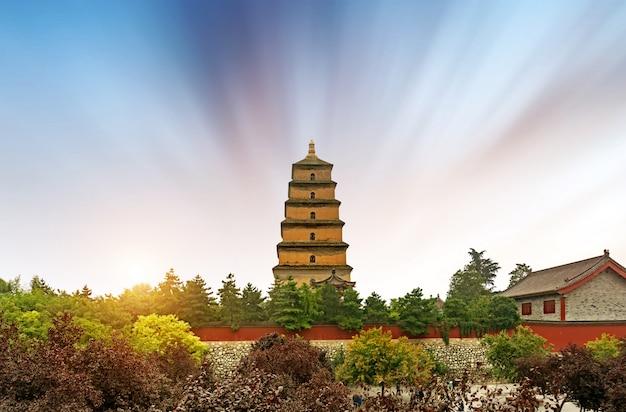 Pagoda dzikiej gęsi w xi'an