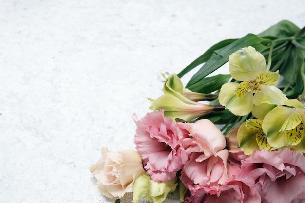Pąki róż na kolorowym tle papieru. wiosenne kwiaty. miejsce na tekst