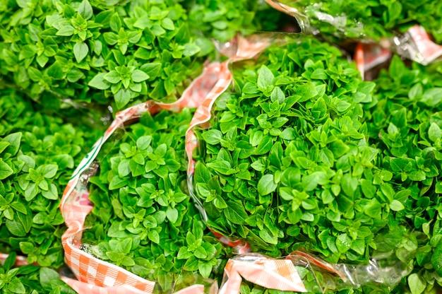 Pakiety bazylii świeżych zielonych roślin leczniczych w pakiecie.