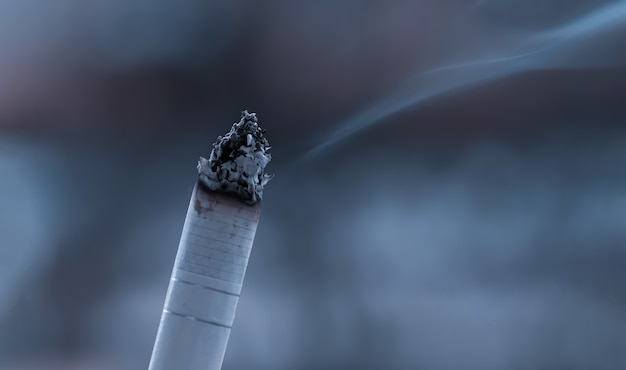 Palenie tlącego się palenia papierosów zbliżenie na białym tle. palenie papierosów na białym tle.