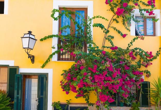 Palma de mallorca śródziemnomorskie fasady i kwiaty w majorca