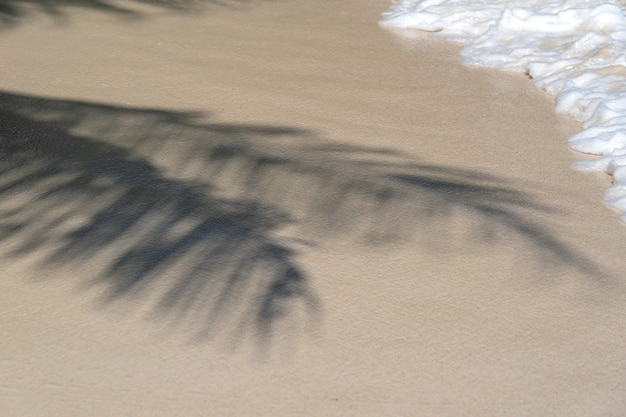 Palma rzuca cień na gładki złoty piasek z białą falą morskiej wody na tropikalnej plaży, z bliska