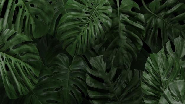Palma tapety lub tła renderowania 3d
