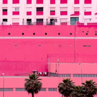 Palma. wyspy kanaryjskie. rośliny na różowej sztuce koncepcyjnej