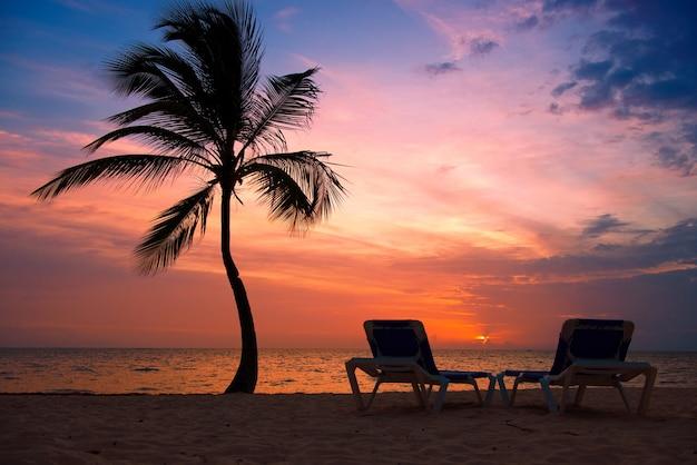 Palmy sylwetka o zachodzie słońca tropikalnej plaży. pomarańczowy zachód słońca.