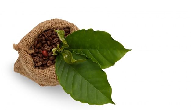 Palone ziarna kawy w worku
