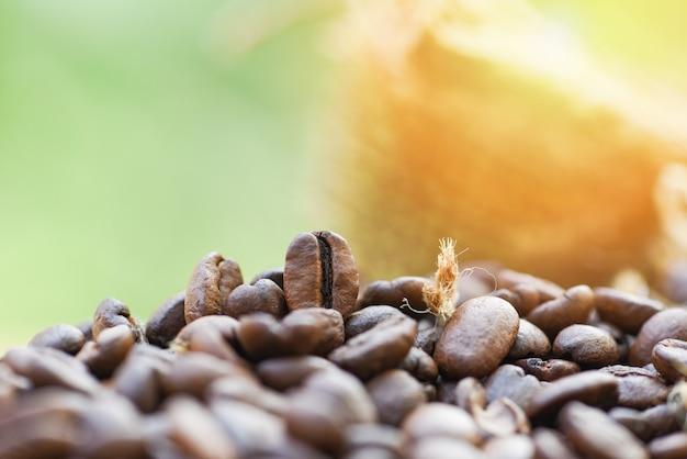 Palonych ziaren kawy w worku / zbliżenie makro ziaren kawy na drewniane i zielone światło słoneczne natury