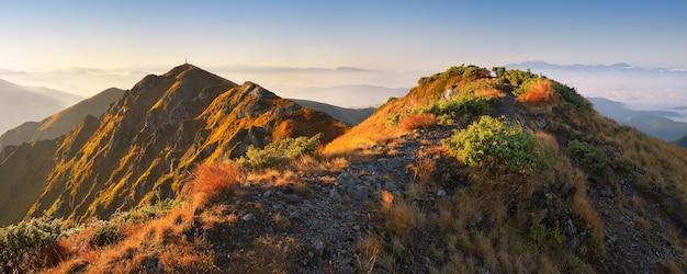 Panorama gór jesienią. szlak turystyczny na grani. słoneczny poranek z pięknym światłem i mgłą. karpaty, ukraina, europa