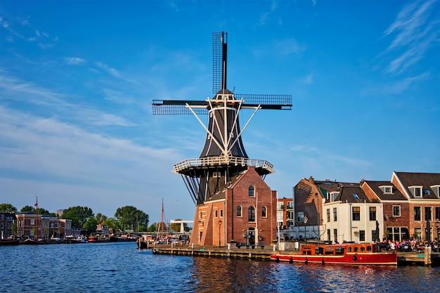 Panorama harlemu, holandia
