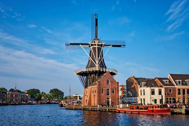 Panorama harlemu w holandii