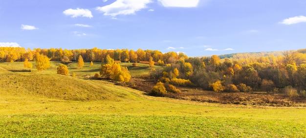 Panorama jesień żółty las na wzgórzach. piękny jaskrawy krajobraz koloru żółtego park. drzewa pomarańczowe