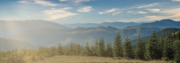 Panorama karpat w słoneczny letni dzień