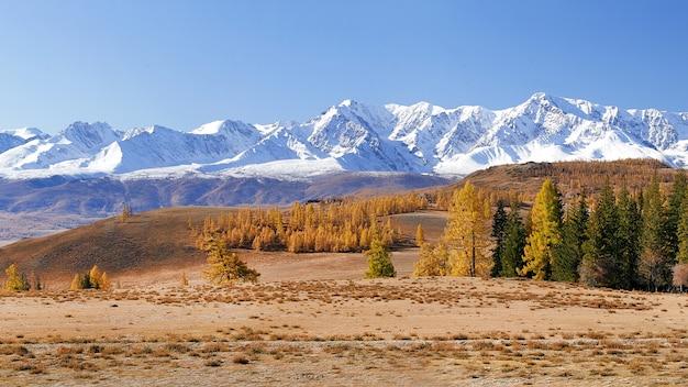 Panorama kolorowy jesień krajobraz w górach.