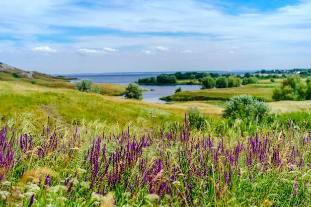 Panorama malowniczy krajobraz ze wzgórzami i zielonymi trawnikami oraz błękitnym niebem z chmurami