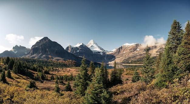 Panorama mount assiniboine z jeziorem magog w jesiennym lesie w prowincjonalnym parku
