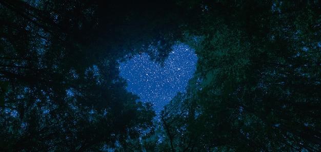 Panorama nocnego nieba w lesie z gwiazdami na niebie