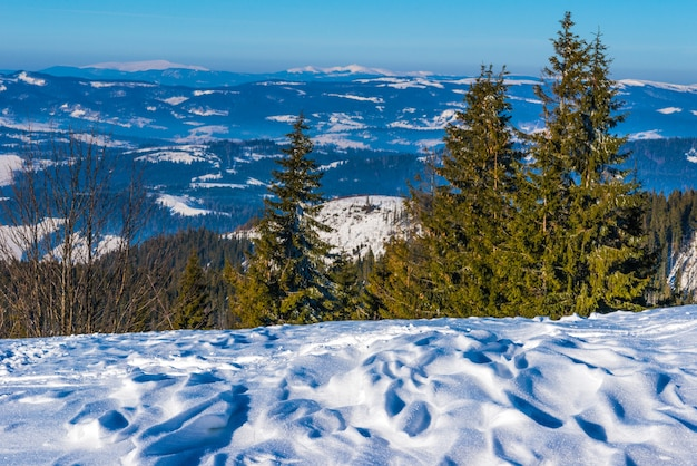 Panorama stoku narciarskiego pokrytego grubą warstwą śniegu na tle błękitnego nieba