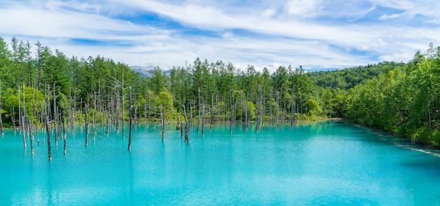 Panorama widok błękitny staw w biei, hokkaido, japonia.