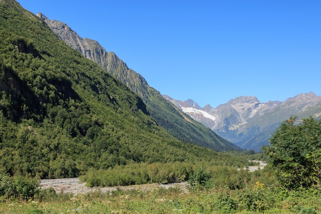Panorama widok gór scen w parku narodowym dombay, kaukaz, rosja, europa. letni dzień krajobrazowy i słoneczne błękitne niebo