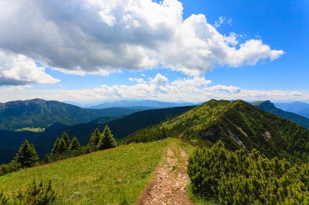 Panorama z włoskich alp, sosny mugo wzdłuż górskiej ścieżki trekkingowej