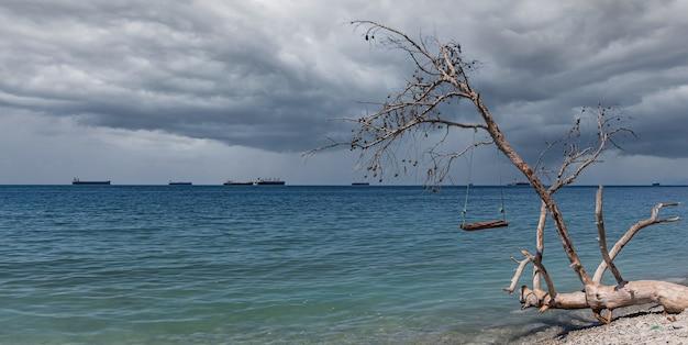 Panorama zachmurzonego morza, huśtawki na zwalonym drzewie i statki towarowe