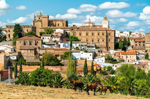 Panoramę caceres w estremadura. światowe dziedzictwo unesco w hiszpanii