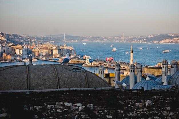 Panoramiczny widok miasto istanbuł przy zmierzchem, podkreślający minarety swój meczet