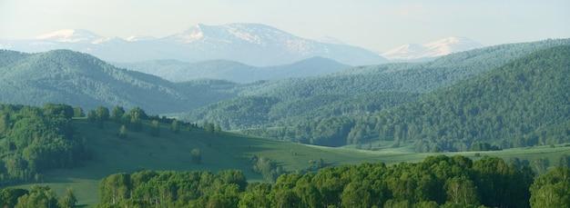 Panoramiczny widok na góry w wiosenny dzień, zielone lasy i śnieg na szczytach