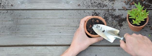 Panoramiczny widok na łopaty mieniu ogrodnikiem wręcza doniczkowej rośliny na drewnianym tle