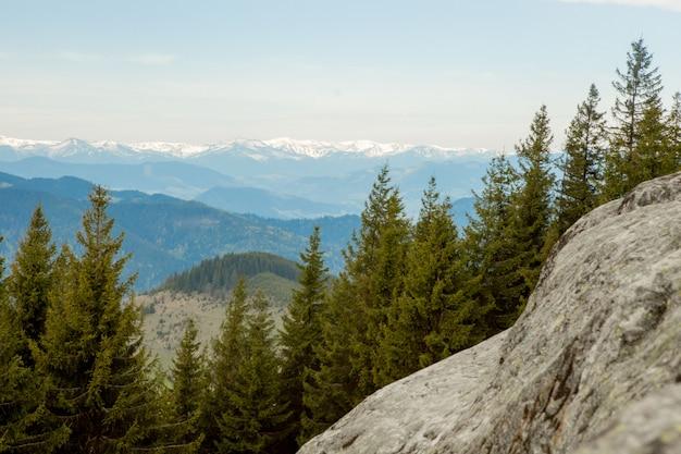 Panoramiczny widok na malowniczy krajobraz karpat z leśnymi zboczami, pasmami górskimi i szczytami. wakacje w górach
