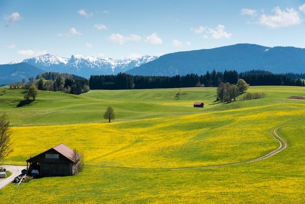 Panoramiczny widok na piękny krajobraz w alpach